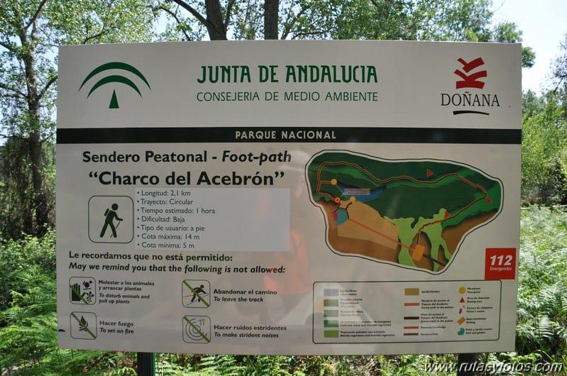Visitar el Parque Nacional de Doñana. 6