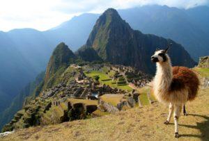 Tren a Machu Picchu y horarios de visitas ¿lo conocías? 2
