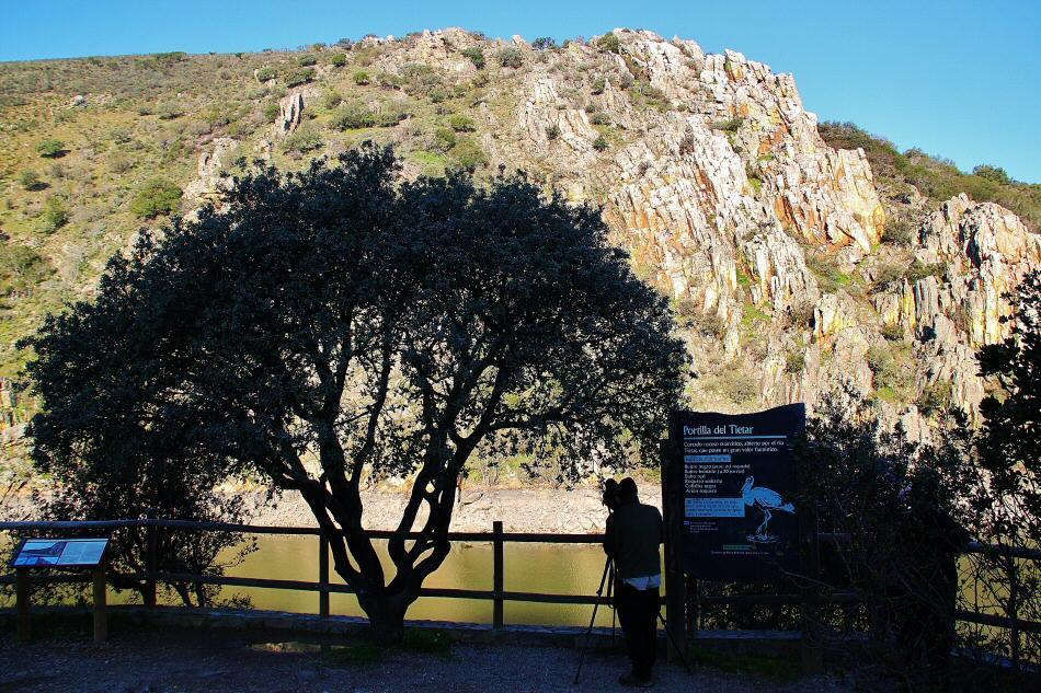 Visitar el Parque Nacional de Monfragüe. 2