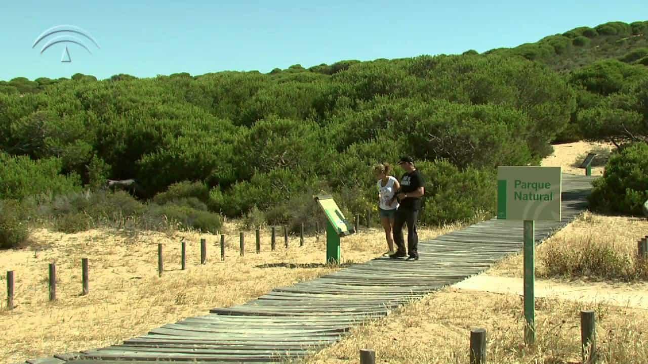 Visitar el Parque Nacional de Doñana. 1
