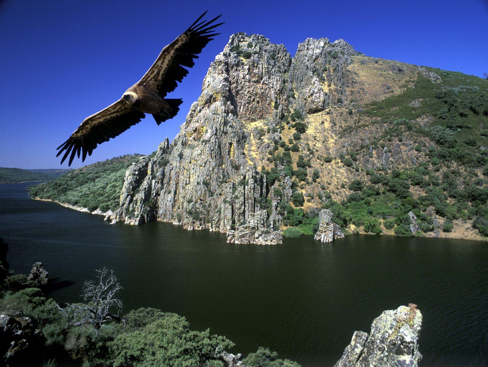 Conoce la Red de Parques Nacionales 3