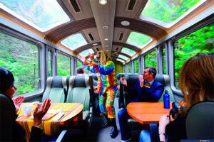 Tren a Machu Picchu y horarios de visitas ¿lo conocías? 6
