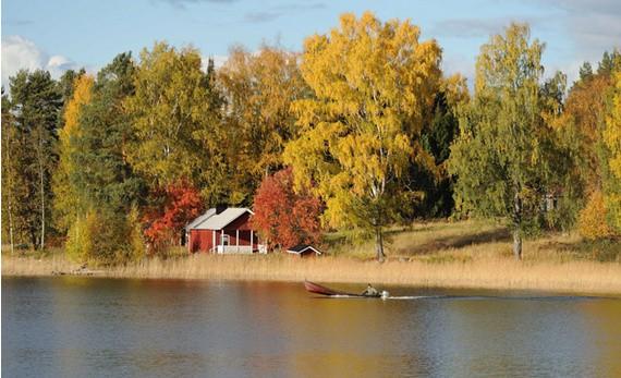 Turismo en otoño: descubre paisajes únicos desde el tren 5