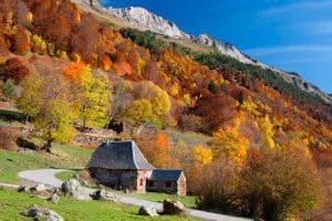 Turismo en otoño: descubre paisajes únicos desde el tren