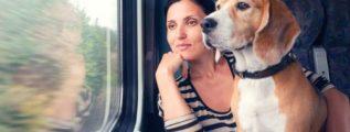 Viajar en tren con animales