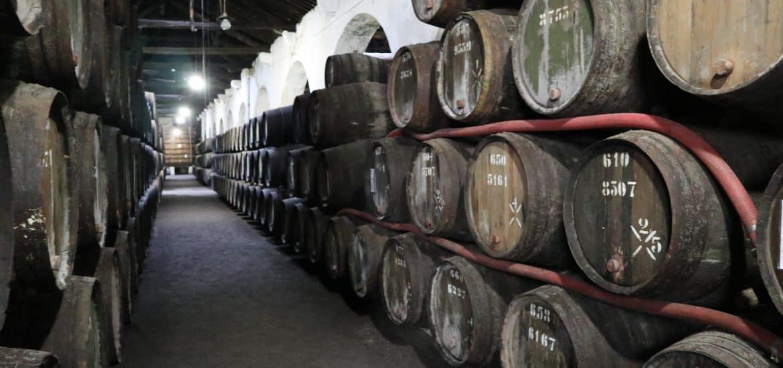 Oporto y sus vinos en verano 3