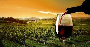 Conoce las 5 mejores rutas del vino españolas viajando en tren o AVE