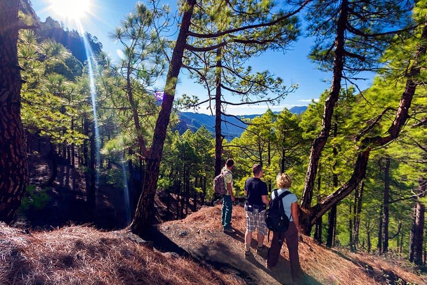 Visitar el Parque Nacional de la Caldera de Taburiente. 5