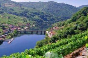 Tren del vino de las Rías Baixas
